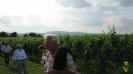 Sommernachtswanderung Weingut Bergkeller Andres Niederkirchen 2013